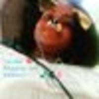 Imagem de perfil: Valdinéia Vasconcelos